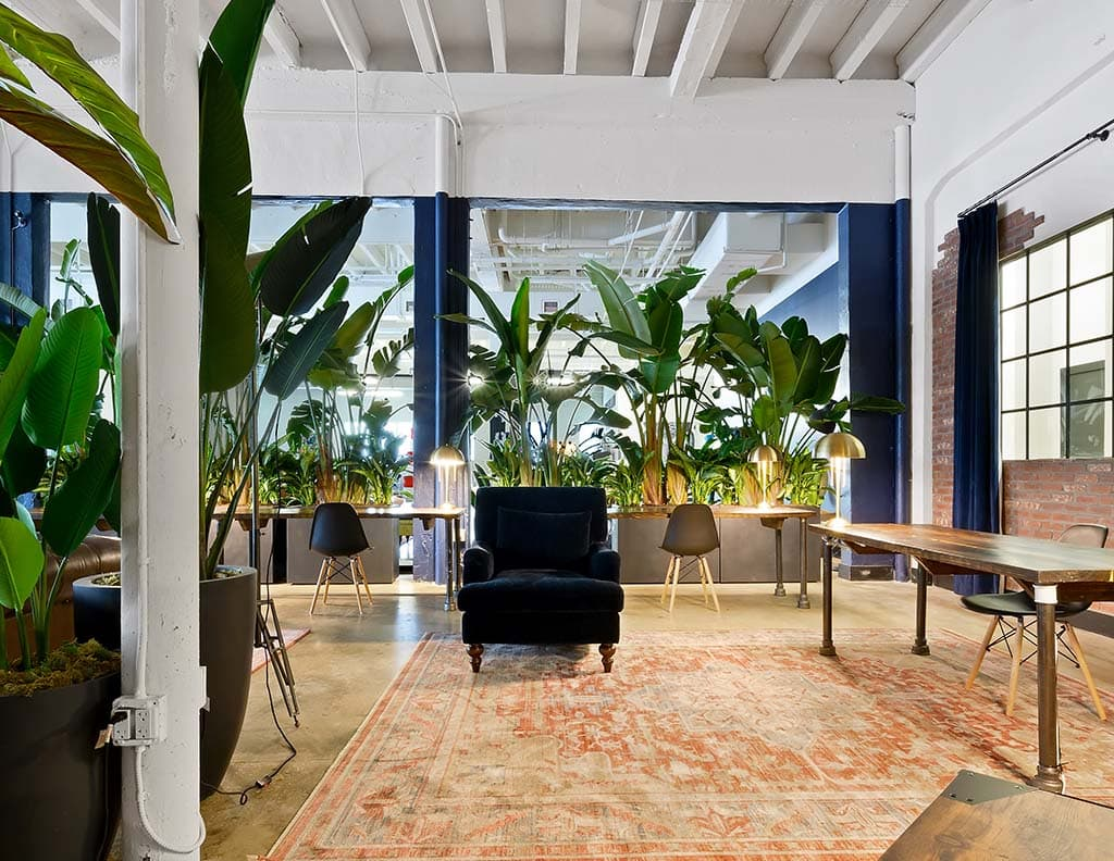 flexible coworking space in miami ampersand studios